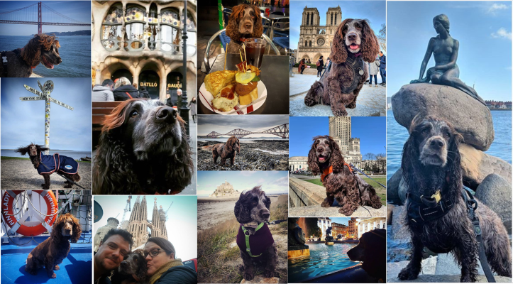Nell travel collage
